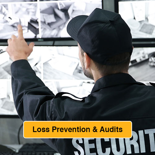 Loss Prevention and Audit link