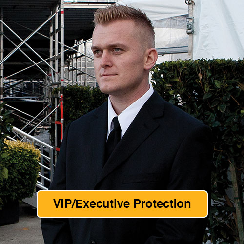 VIP Executive Protection Link